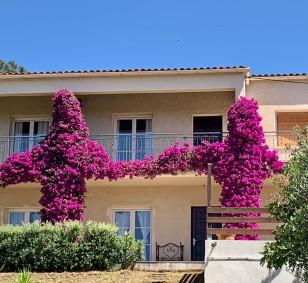 Maison composée de 2 logements - Trova photo #3771