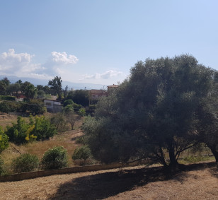 Terrain à bâtir de 1 787 m2 - Ajaccio, Rocade photo #2666