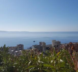 Appartement de type F1 avec terrasse et vue mer - Sanguinaires photo #909