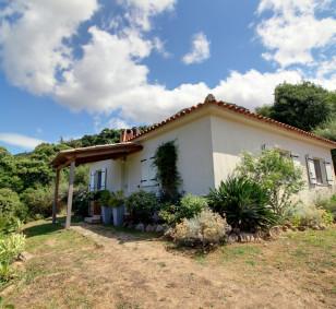 Maison moderne 3 pièces avec terrasse et jardin - Carbuccia photo #4463
