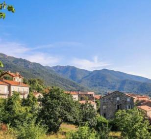 Terrain à bâtir - Corse du Sud photo #2645