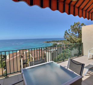 Location appartement T1 Bis avec très belle vue mer - Résidence Santa Lina photo #4581